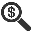 financial audit loupe icon