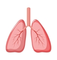 Human lungs icon in cartoon style vector image vector image
