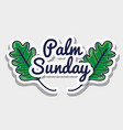 palm sunday message to catholic religion vector image