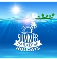 Summer holiday icon for travel and vacation design vector image vector image