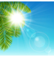 Sunny day vector image vector image