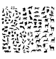 the big set forest animals silhouettes vector image