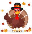 turkey in hat shows like on a white with autumn vector image