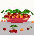 yellow and red cherry in a plate vector image vector image