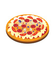 appetizing pizza vector image