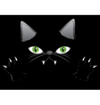 Black cat face with paw vector image