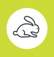 rabbit line icon isolated on white vector image