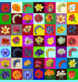 big group set of flowers and bouquets of garden vector image