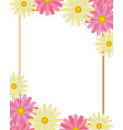 cute flowers cartoon vector image