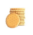 stack of round biscuit cookies template vector image