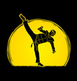 taekwondo kick action with guard equipment vector image vector image