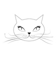 Cartoon cat face vector image