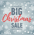 christmas sale banner big sale holiday discount vector image vector image