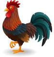 cute rooster cartoon vector image vector image