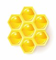 honeycomb vector image