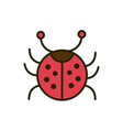 ladybug insect wildlife nature drawing vector image