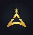 triangle star bright gold logo vector image