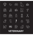 veterinary editable line icons set on black vector image vector image