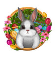white bunny in frame with flowers vector image vector image
