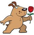 dog flower vector image vector image