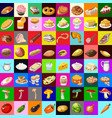 group set delicious vegetable and meat food vector image