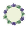 round label with tropical leaves vector image