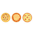 thinly sliced pepperoni is a popular pizza vector image