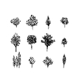 Trees black silhouettes set isolated on white vector image