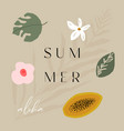 tropical summer with fruits tropics vector image