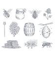 bee engraving honey bees beekeeping farm vector image