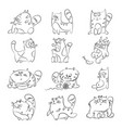 cats line art set vector image vector image