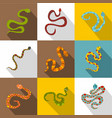 poisonous snakes icons set flat style vector image vector image