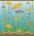 river or lake underwater world vector image