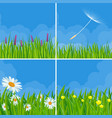 spring and summer meadow backgrounds vector image