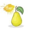 Yellow Pear vector image
