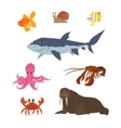 Cartoon set goldfish snail shark fish butterfly vector image