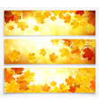 Collection of autumn banners vector image vector image