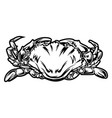 crab black and white drawing red gold vintage sea vector image