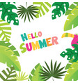 hello summer frame with tropical trees vector image