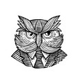hip wise owl suit woodcut vector image