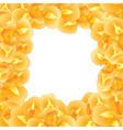 orange iris flower border vector image