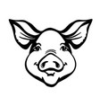 pig head farm animal black graphic vector image vector image