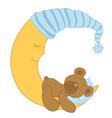 Sleeping Baby Bear vector image vector image