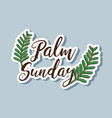 sunday palm branches to traditional religion vector image