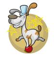 dog on the ball vector image