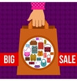 Big sale design vector image vector image