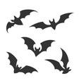 flying night bats vector image
