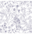 outlined botanical pattern with wild flowers vector image vector image