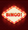 bingo casino lotto billboard background vector image