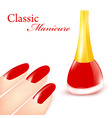 classic manicure vector image